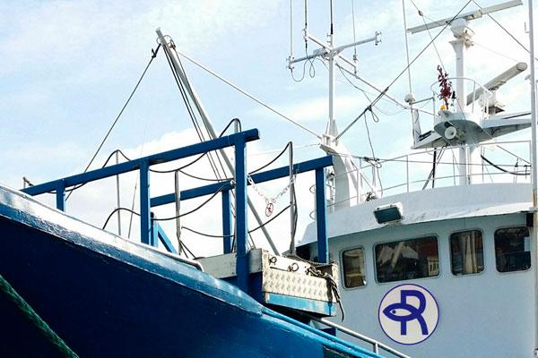 Mayorista de pescados en Gipuzkoa
