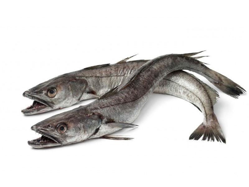 Merluza en Pescados Rodolfo